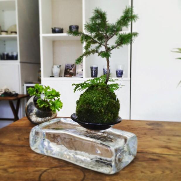 小沢典子ガラスSANSUI2015
